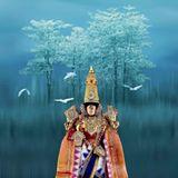 Venkatachalam Raj